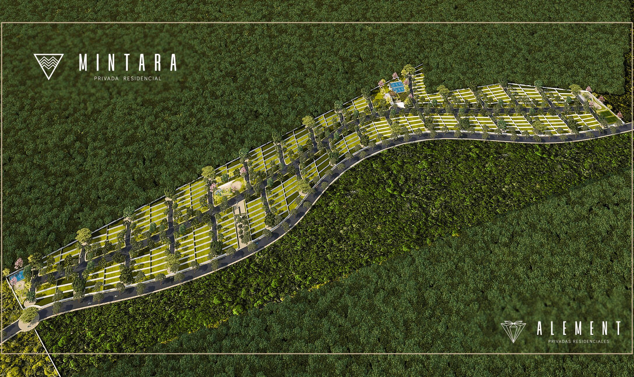 Mintara Area Conjunto